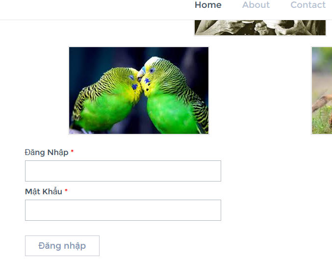 lua dao facebook